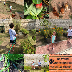 Outdoor Learning/Garden