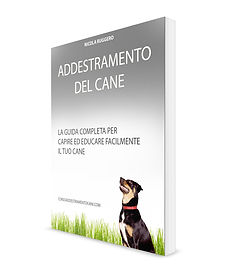Dressage de chien | Cybelplace
