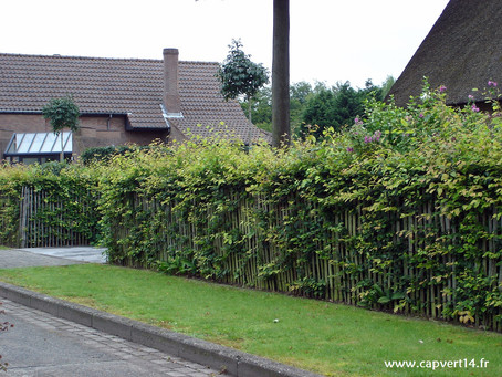Une clôture originale