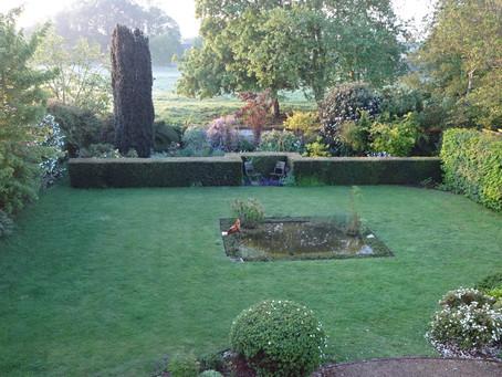 Le jardin au réveil