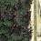 Thumbnail: PUTNAM COUNTY FL/24-09-24-4075-0430-0270