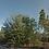 Thumbnail: PUTNAM COUNTY FL/ 07-10-24-4213-0220-0070
