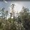 Thumbnail: PUTNAM COUNTY FL/10-10-24-4060-0100-0070