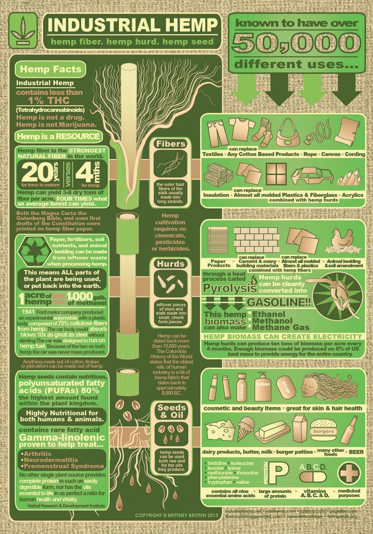 Hemp-Infographic-min.jpg