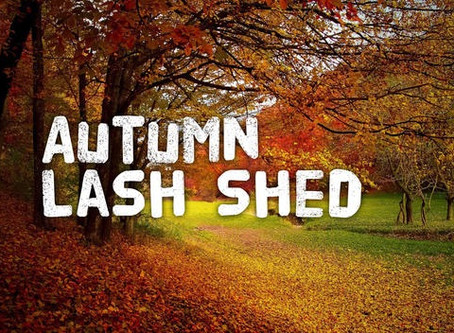 Autumn Lash Shed