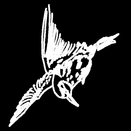 Pájaro.png