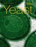 yeast_newsletter.jpg