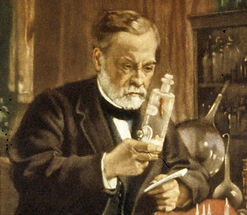 L Pasteur.jpg