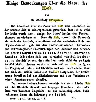 Wagner_Gärung 1.jpg