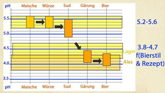 pH-Aenderung Brauprozess.jpg