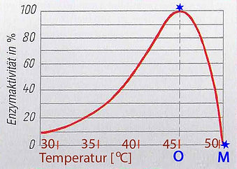 Enzymaktivität -Temperatur.jpg
