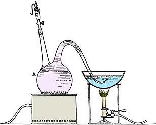 Pasteur_anerobic apparatus.jpg