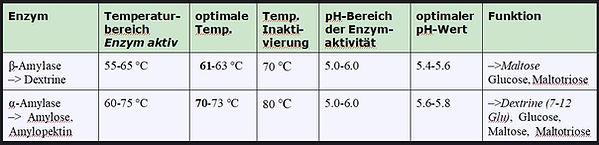 Enzymaktivität_Temperatur.jpg