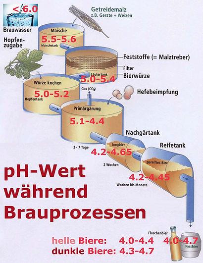 pH-Werte Brauprozess summary 2.jpg
