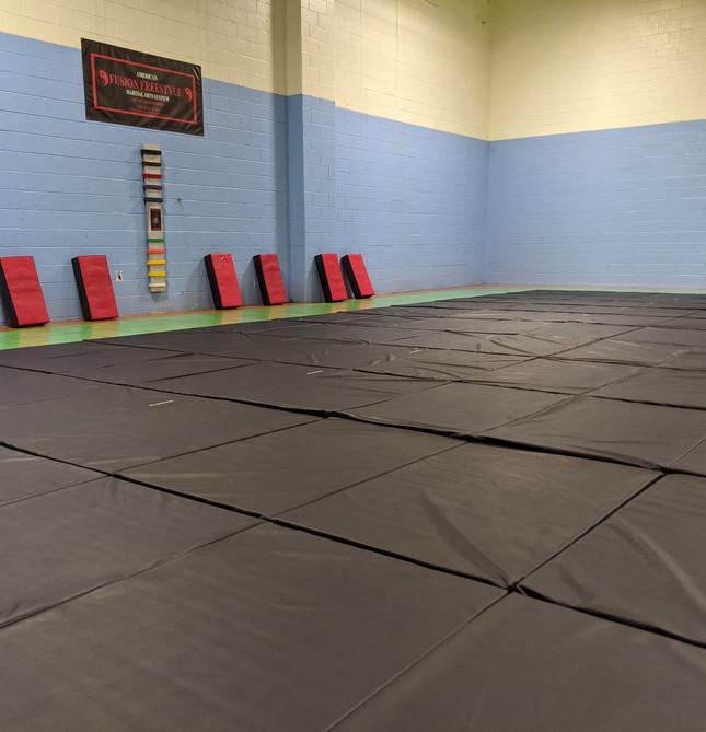 Fusion Freestyle Martial Arts