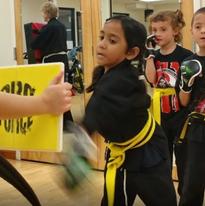 Kids - American Kenpo Jiujitsu Karate - American Kempo Jujitsu Karate - Fusion Freestyle M