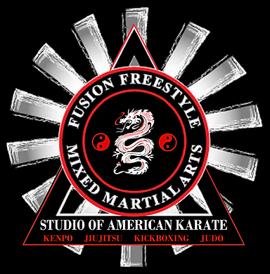 Studio of American Karate - FFMMA KENPO