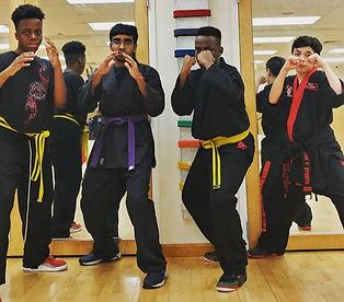 American Kenpo Jiujitsu Karate - America