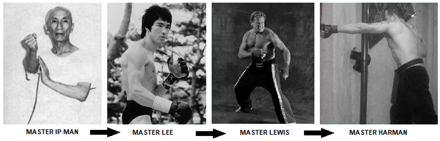 IP man Bruce Lee Joe Lewis -Fusion Frees