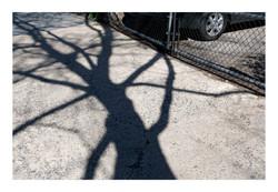 Shadows_032