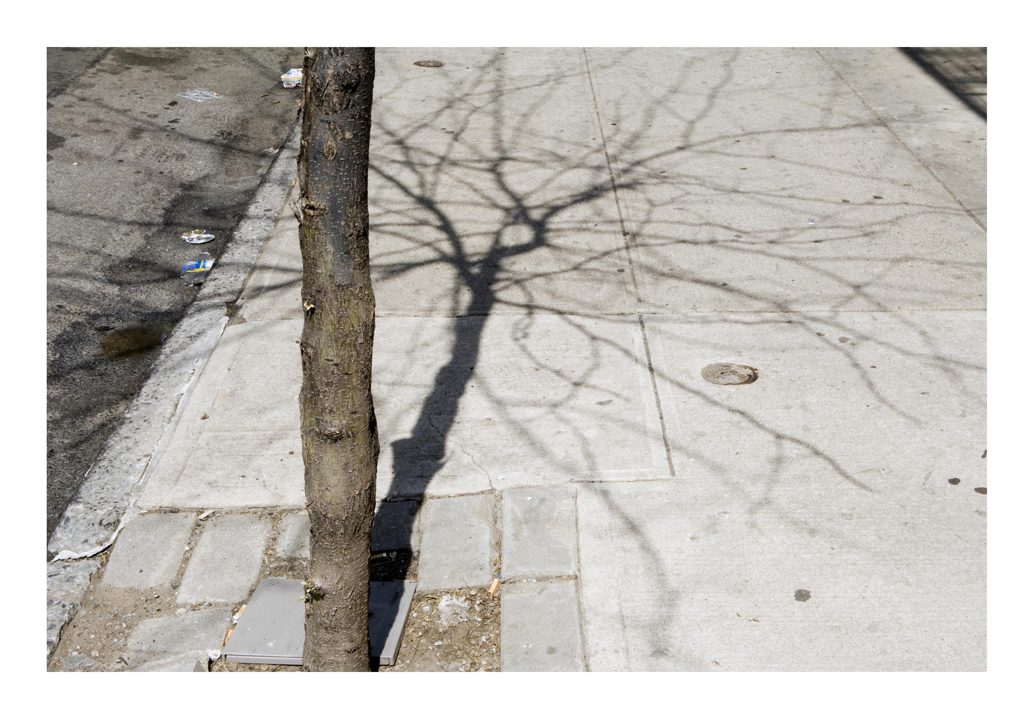Shadows_165