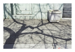 Shadows_178