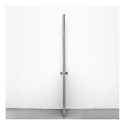 One Panel / One Lite Door