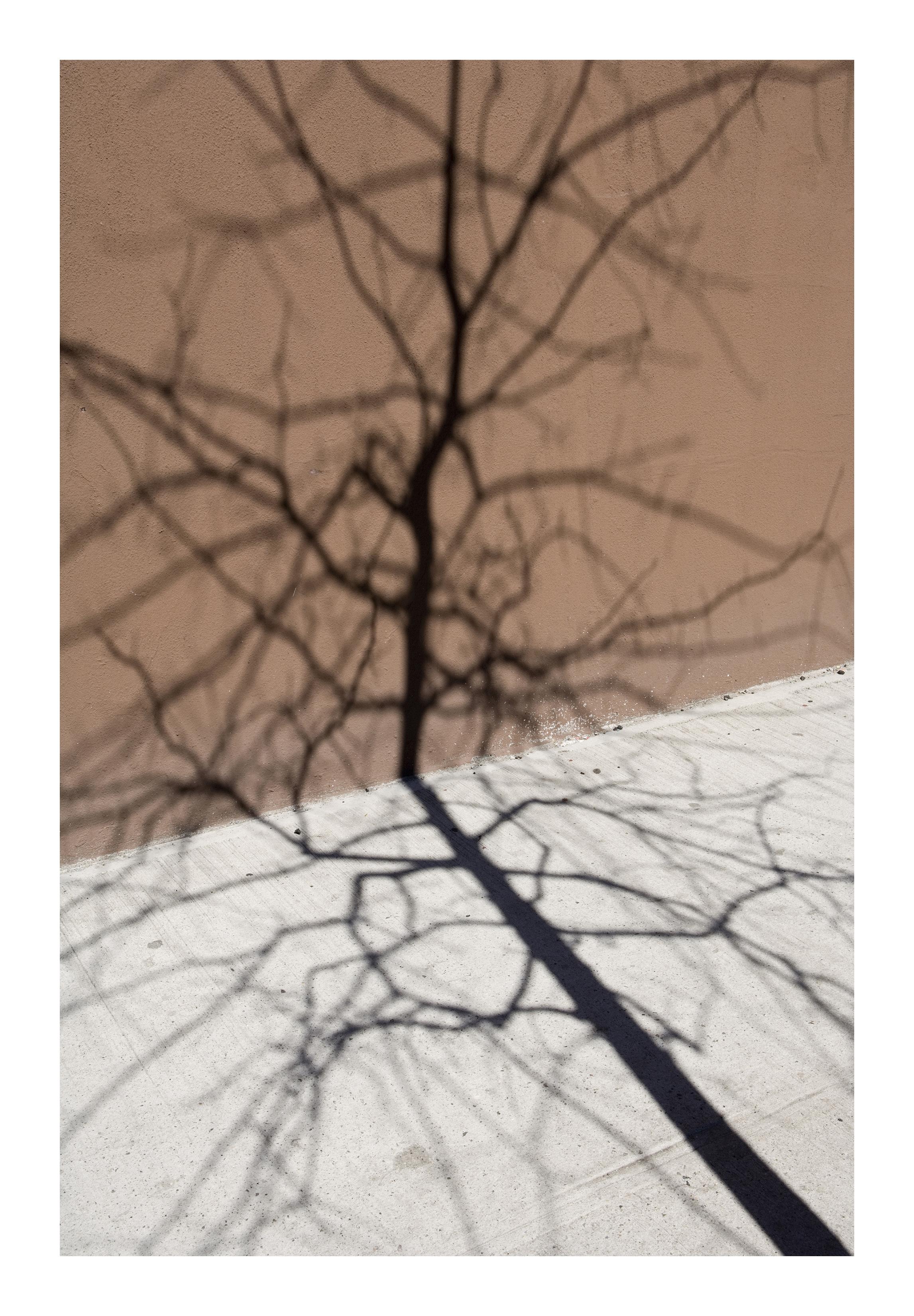 Shadows_003
