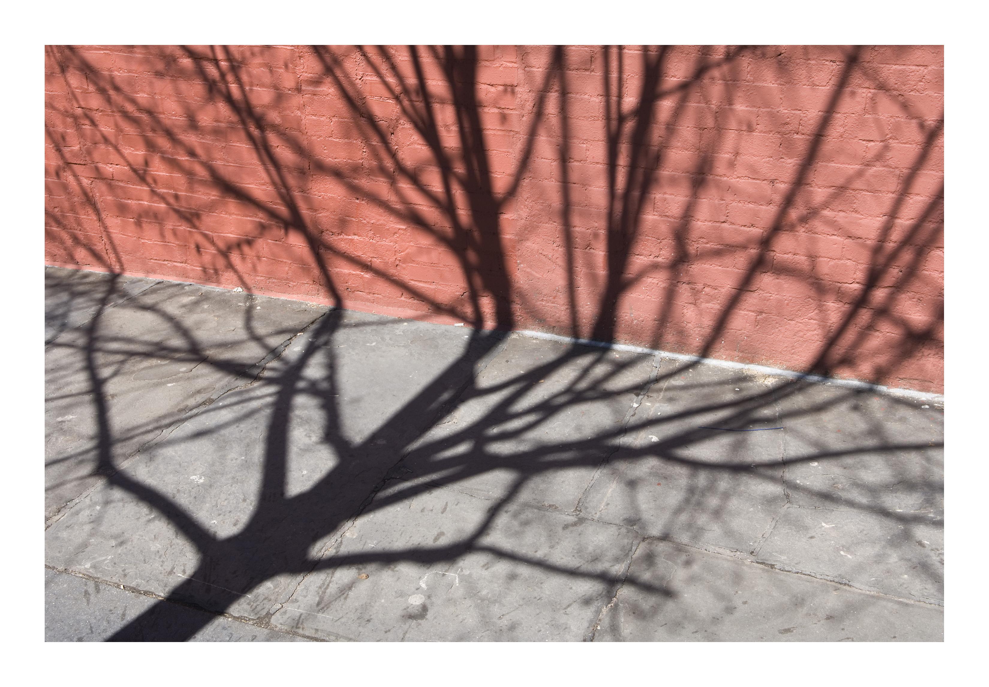 Shadows_006