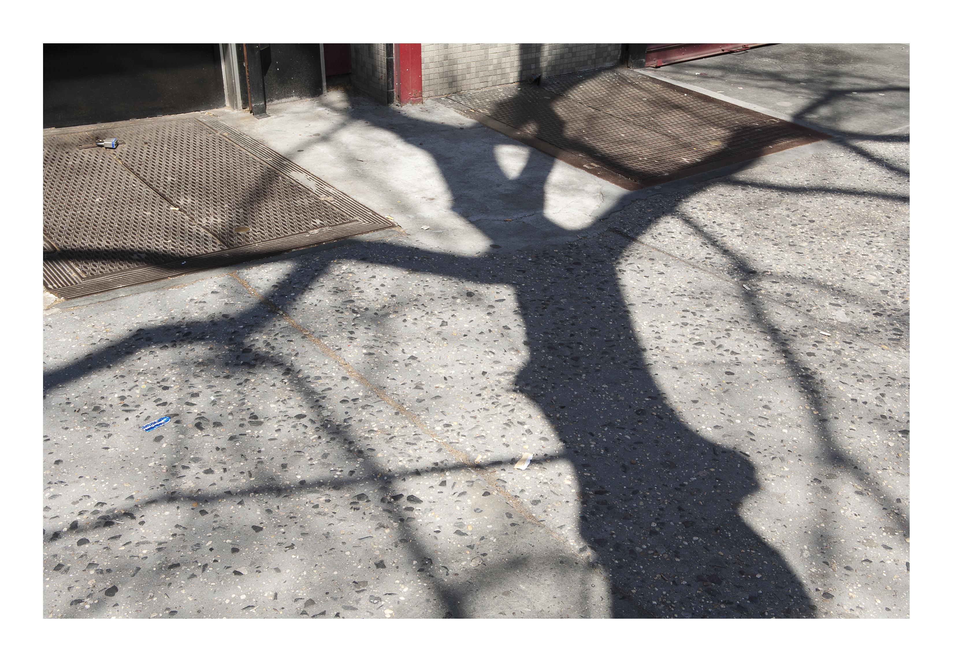 Shadows_086