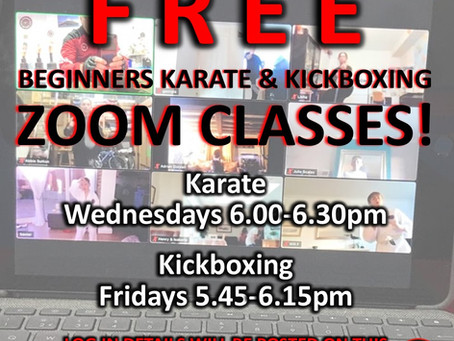 🥋 FREE MARTIAL ARTS CLASSES!! 🥊