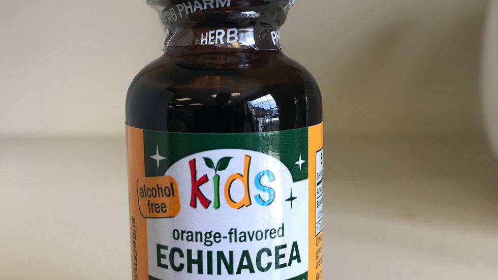 Kids Echinacea