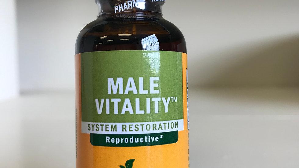 Male Vitality