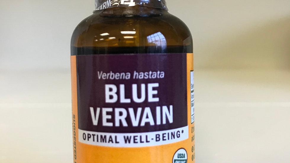 Blue Vervain