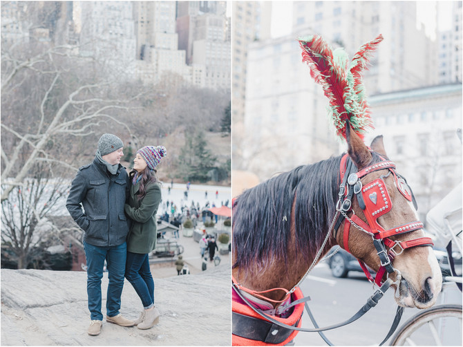 Winter Engagement {Lisa + Ken} Central Park