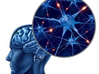 Brain & Mind Matters