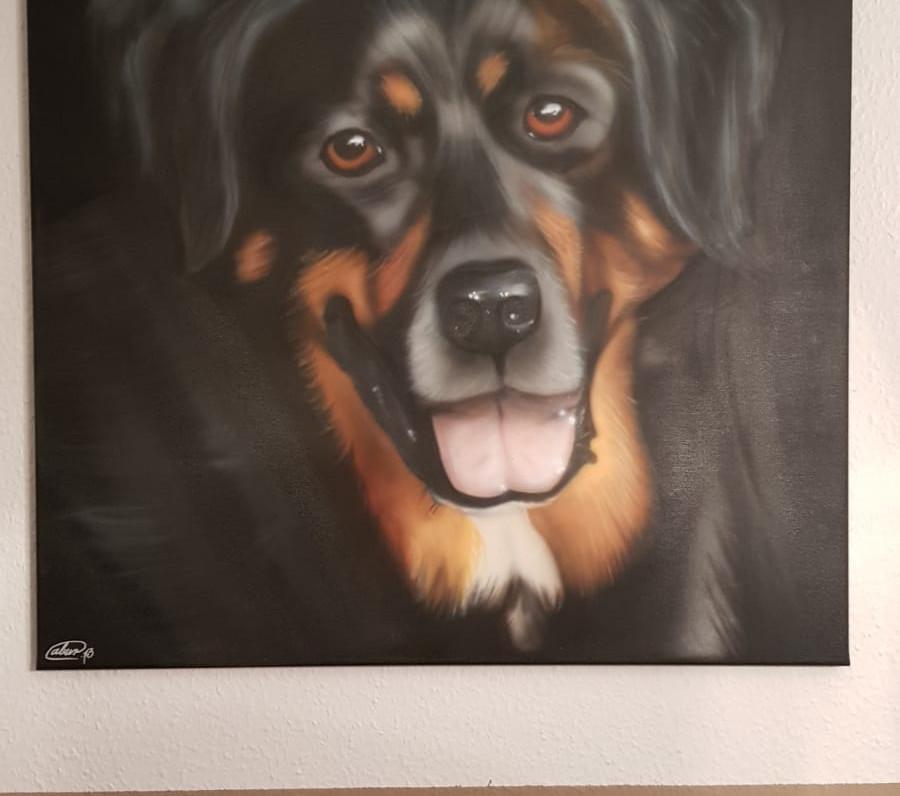 Airbrushbild von einem Hund (Bruno)