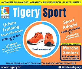 TIGERY SPORT_5.png
