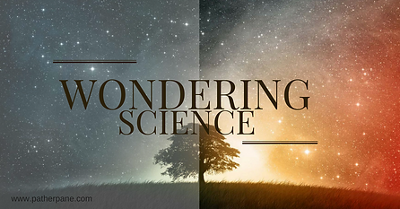 Wondering Science Logo