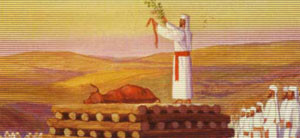 La Mucca Rossa: un preludio a Moshiach
