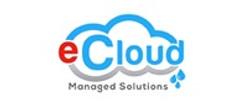e-cloud