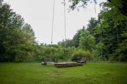 Tree swing with view