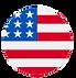 usa-flag-icon-flat-19_edited.png