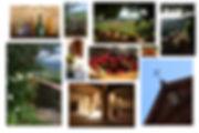 Tuscany 2009 montage.jpg