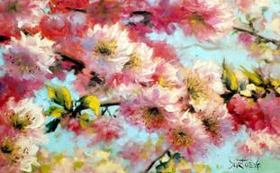 Цветущий миндаль
