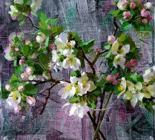Цветущая яблоня,