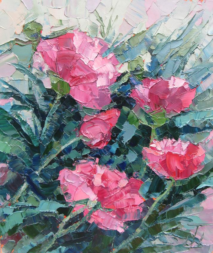 Розовые Пионы 50х40.jpg