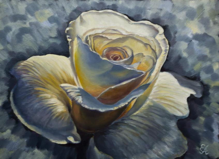 Аристархова Елена. Розы свечение. 60х80, масло, холст