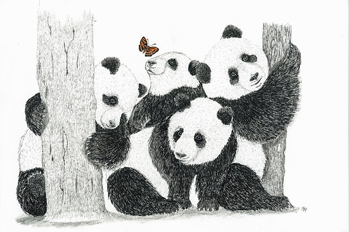 Chinese Butterfly with Pandas