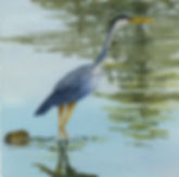 midge-watercolor-crane.jpg